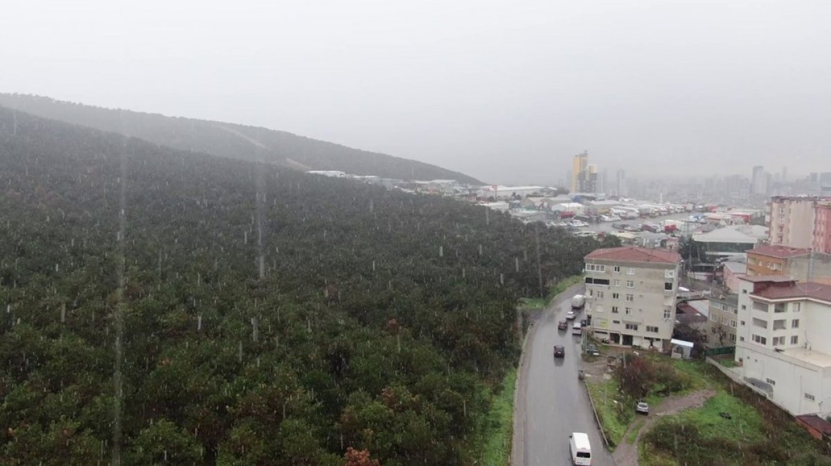 İstanbul da beklenen kar yağışı başladı #2