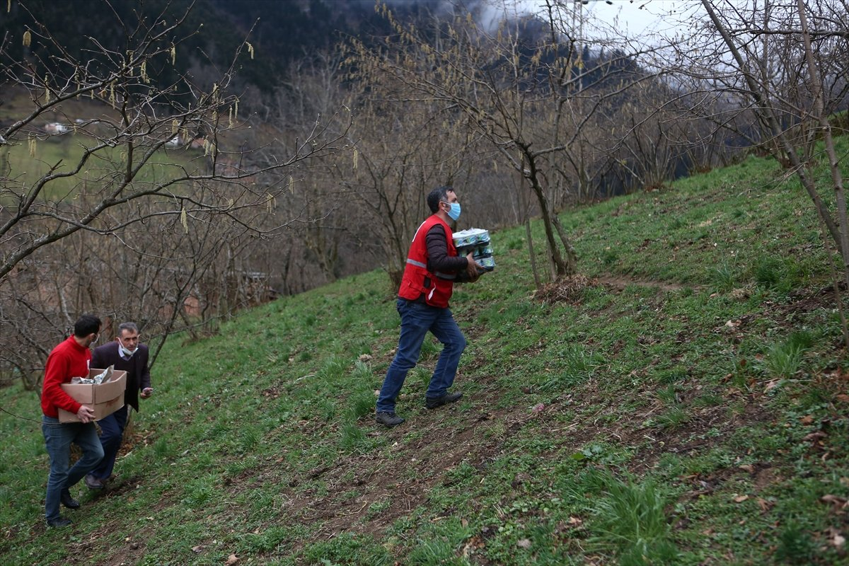 Trabzon da yangınla yok olan mahallede hasar tespiti yapılıyor #11