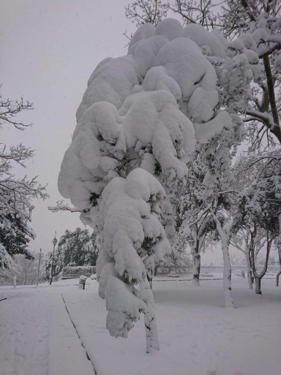 kar yagisi 5634
