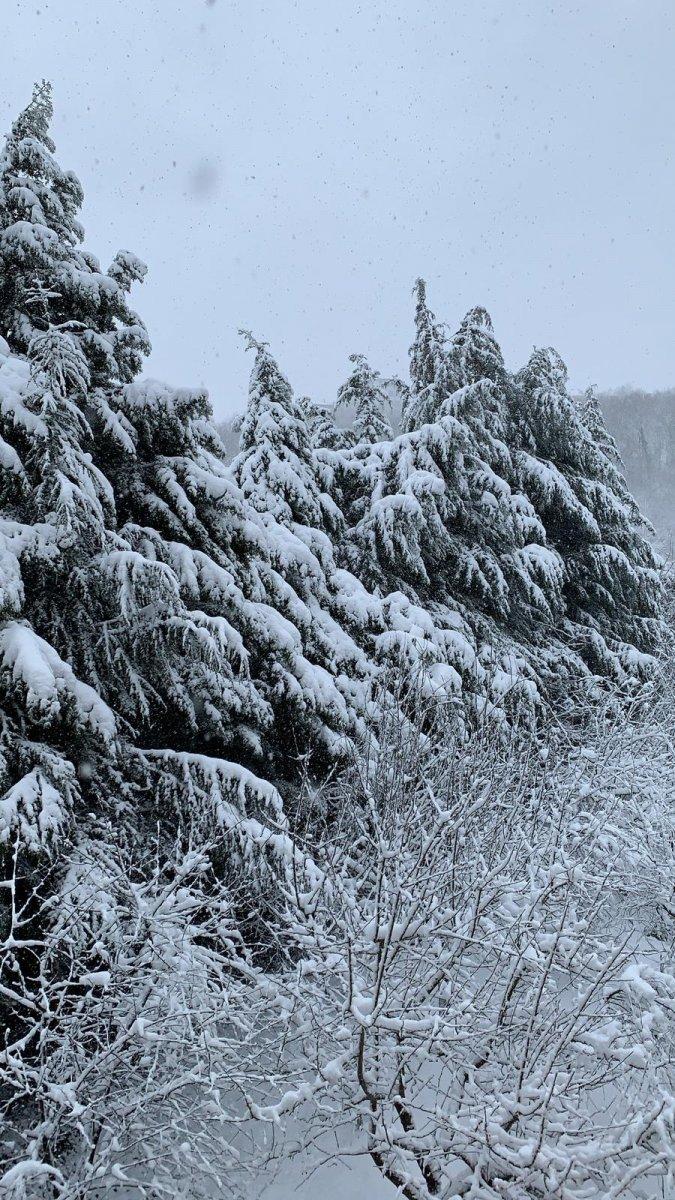 kar yagisi 9630