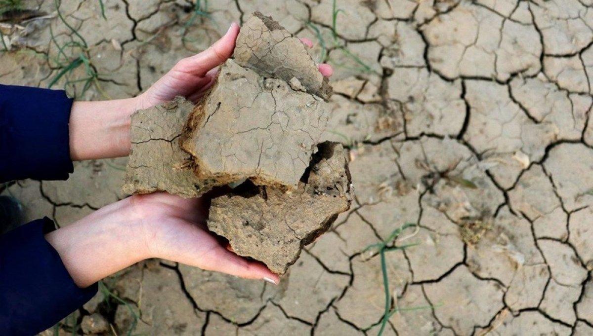 WWF den Türkiye ye uyarı: Kuraklık kritik seviyeyi geçti #1