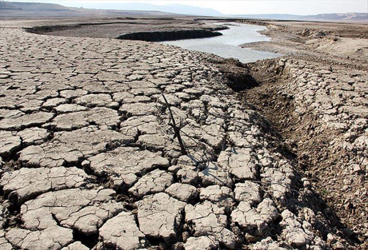 WWF den Türkiye ye uyarı: Kuraklık kritik seviyeyi geçti #3