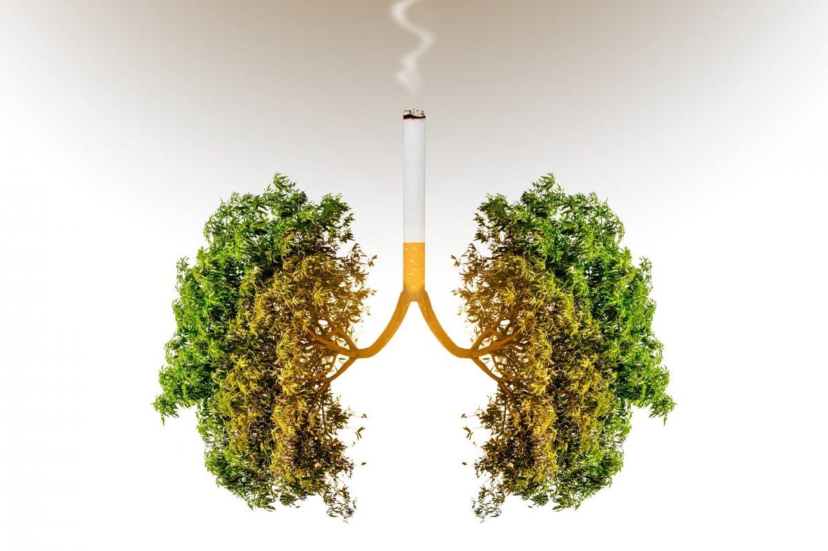 koronavirusten olenlerin yuzde 85i sigara iciyor 961