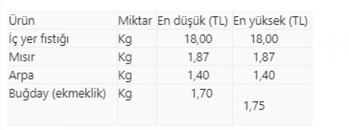 İç yer fıstığının kilogramı Osmaniye de 18 liradan işlem gördü #1