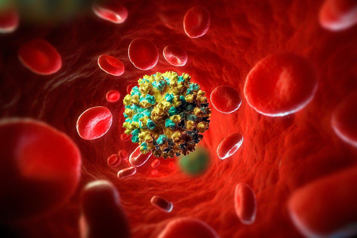 hepatit c enfeksiyonundan korunmanin 5 yolu 1605