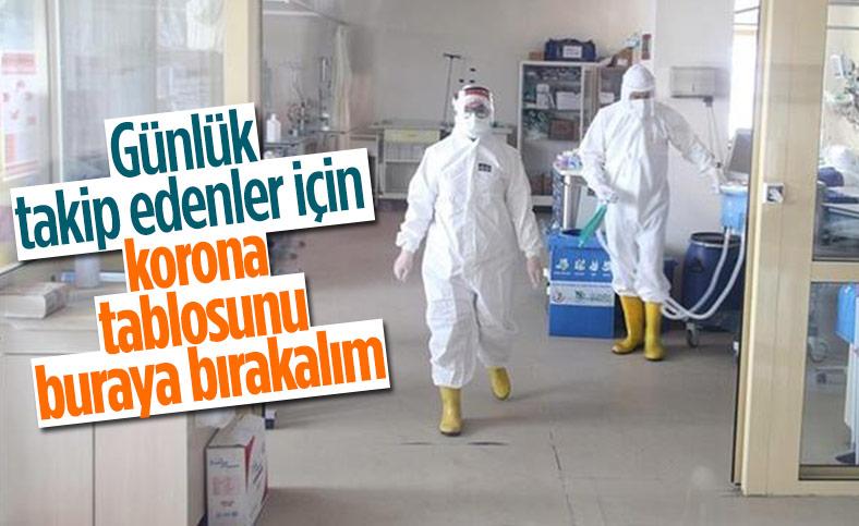 19 Şubat Türkiye'de koronavirüste son durum