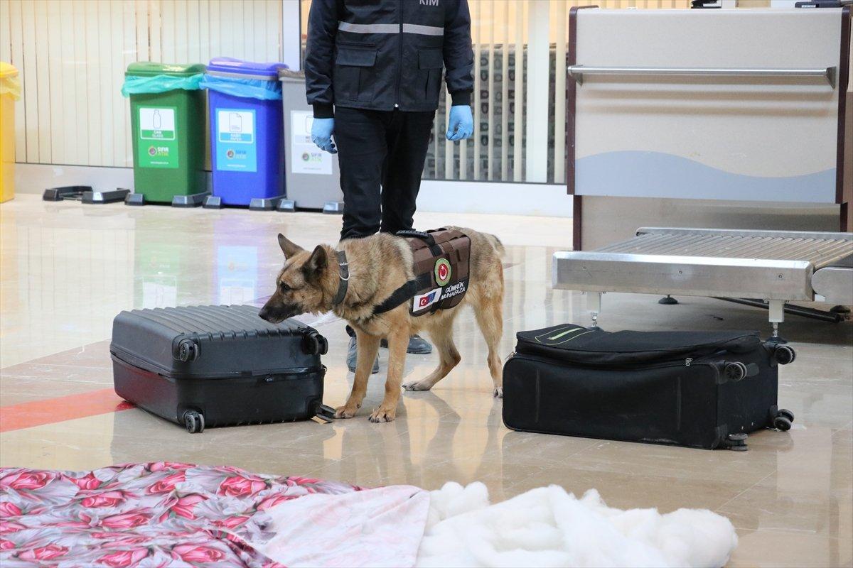 Denizli de İranlı yolcunun valizinden uyuşturucu çıktı #7