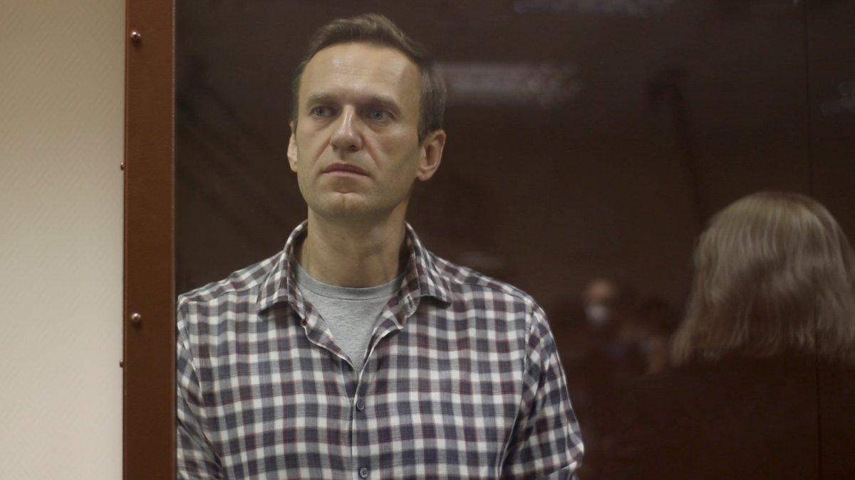 Rus muhalif Navalnıy a  gaziye iftiradan  para cezası #2