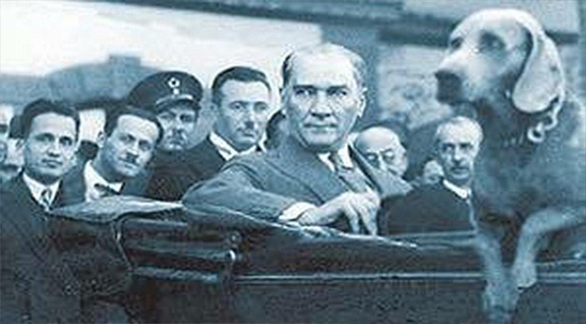 CHP li Bilecik Belediyesi nden Atatürk ve köpeği Foks un heykeli #3