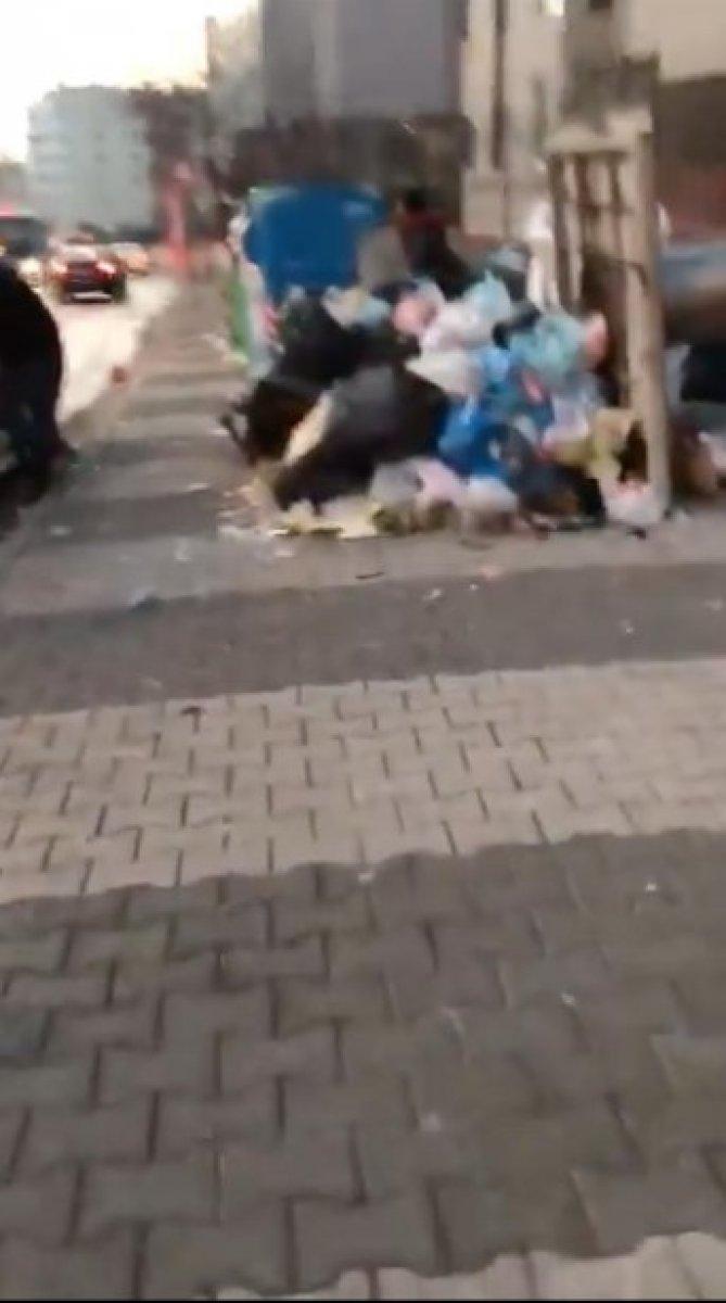 Maltepe deki çöp konteynerleri etrafa taştı #2