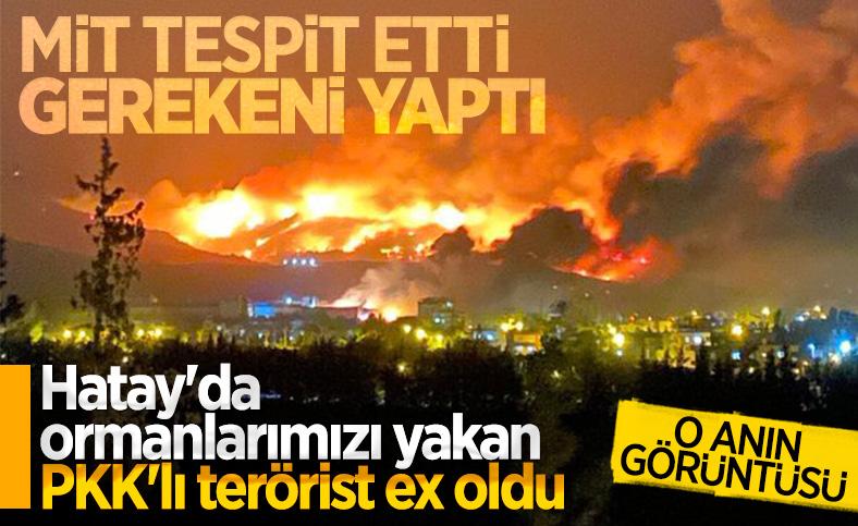 PKK'ya orman yakma talimatı veren terörist öldürüldü