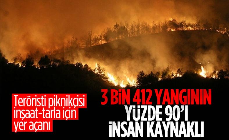 2020 yılında Türkiye'deki orman yangınlarının maliyeti