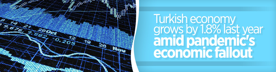 Turkey's economy grows by 1.8% in 2020 despite pandemic