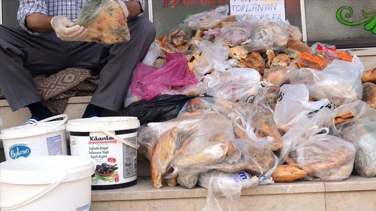 Türkiye de her yıl 7,7 milyon ton yiyecek çöpe atılıyor #1