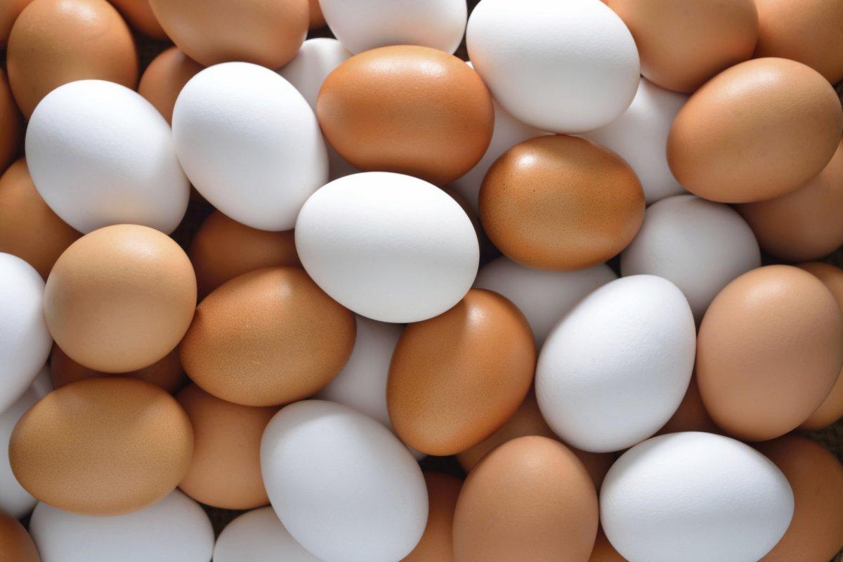 Et dışında 7 büyük protein kaynağı #1