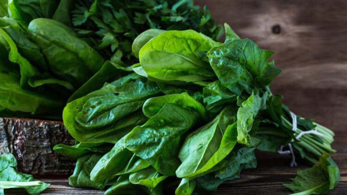 İdeal sağlık için günlük tüketilebilecek 6 basit gıda #2