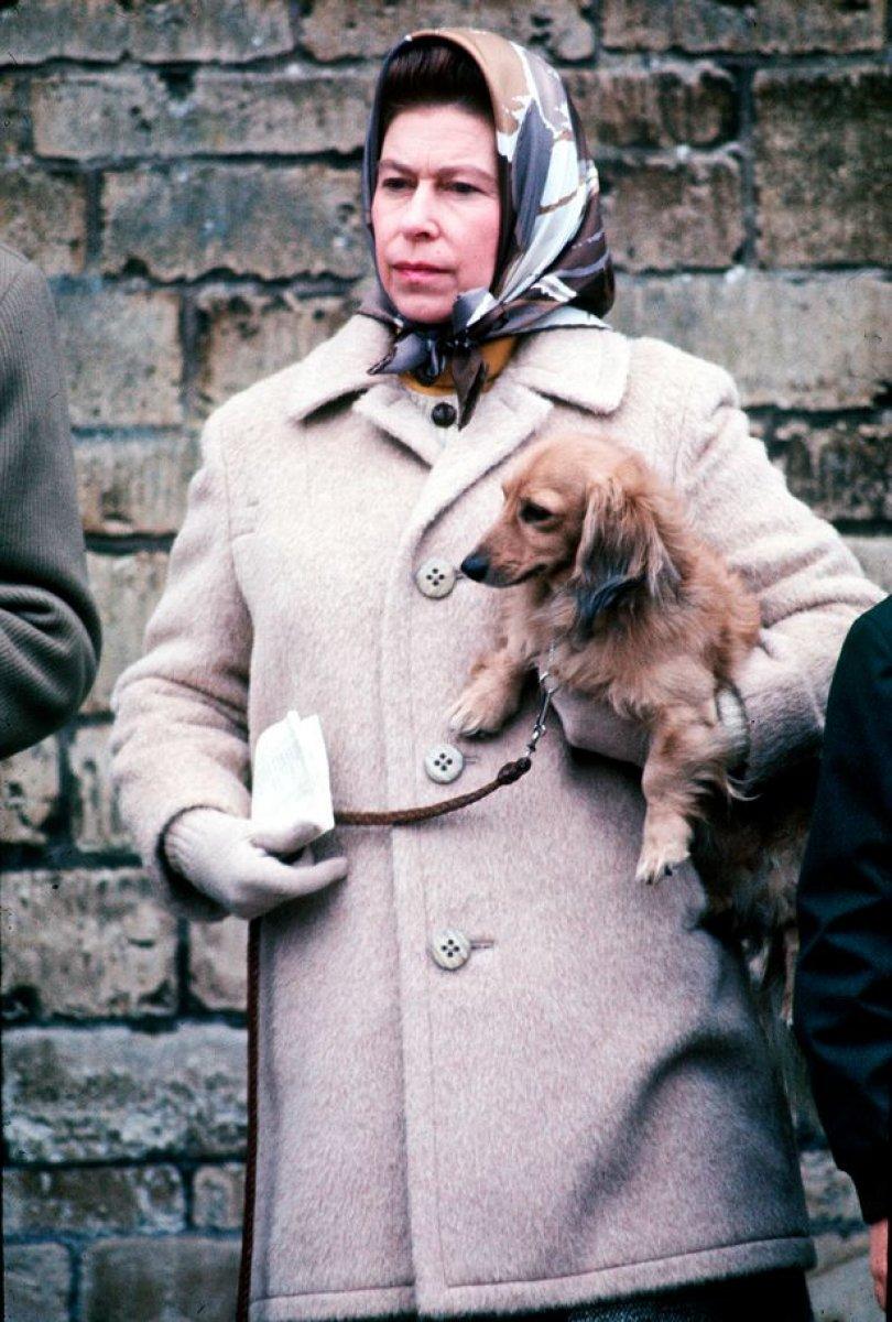 Kraliçe Elizabeth, köpeğine savaşta ölen amcası Fergus un adını verdi #3