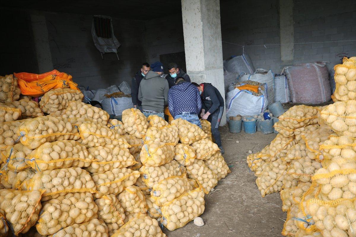 Cumhurbaşkanı Erdoğan ın talimatıyla çiftçiden alınacak ürünler ücretsiz dağıtılacak #1