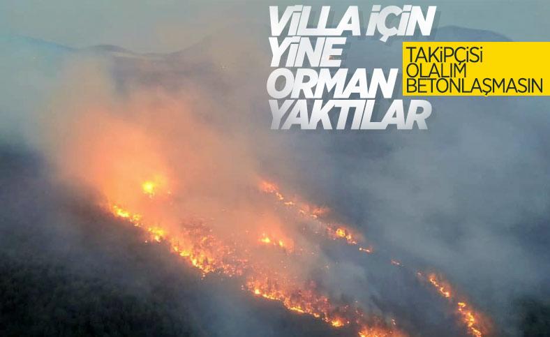 Muğla'da 29 hektarın zarar gördüğü orman yangınında sabotaj şüphesi