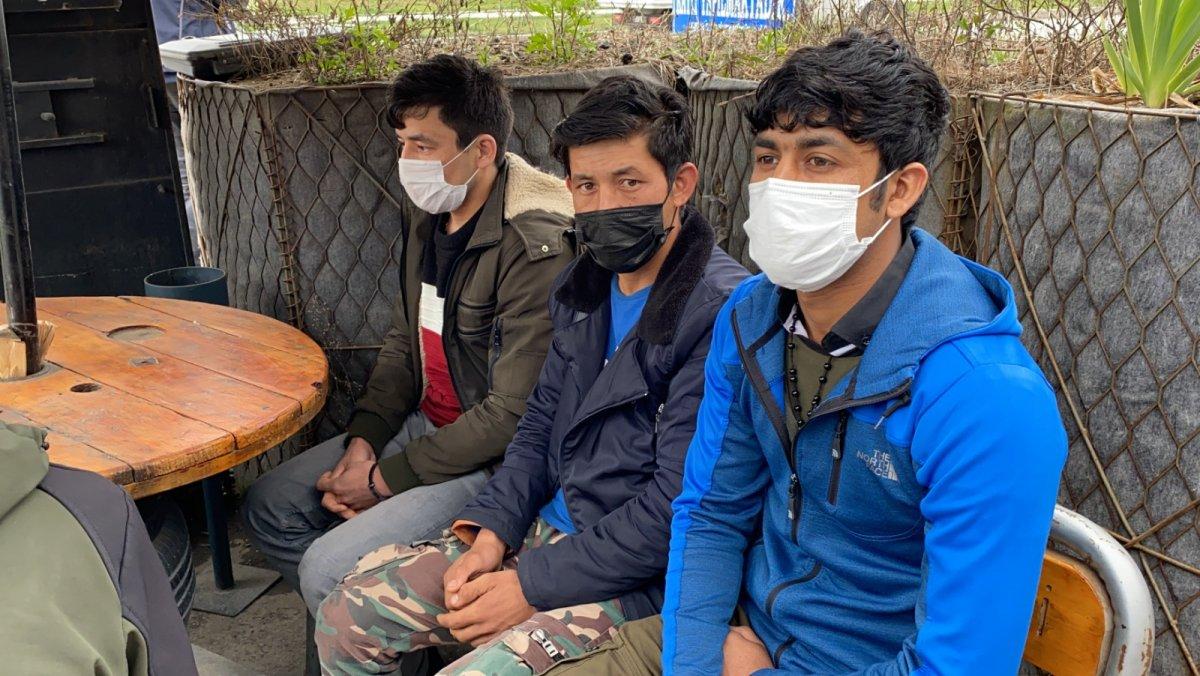 Doğu Karadeniz'de çay işçisi göçü başladı, uyarı geldi #1