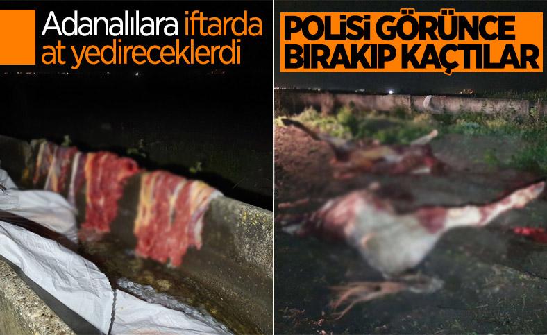 Adana'da, at kesimi yapanlara suçüstü