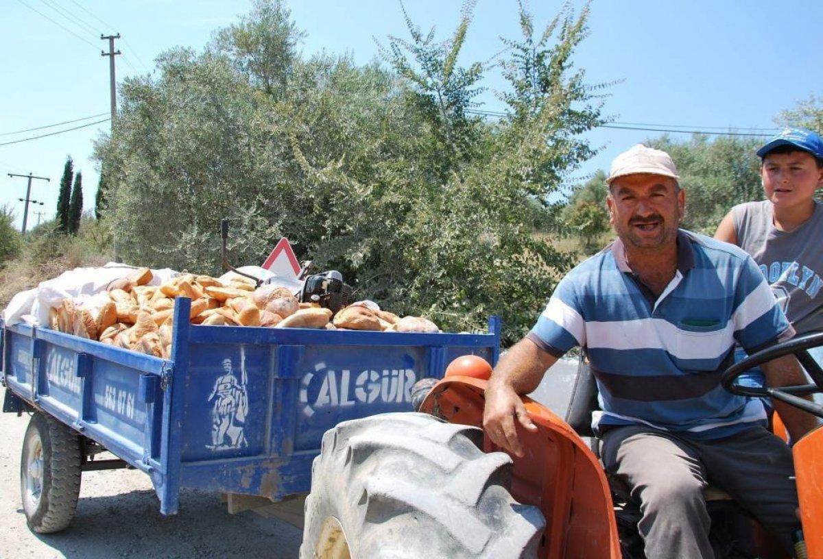 Türkiye'de her yıl 18,8 milyon ton gıda çöpe gidiyor  #1
