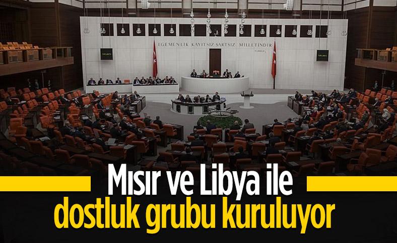 Mısır ve Libya ile dostluk grubu kurulması tezkeresi TBMM'de kabul edildi