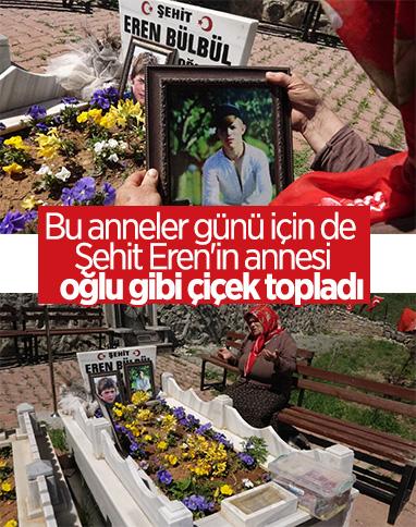 En buruk anneler günü: Şehit Eren Bülbül'ün annesi oğluna çiçek topladı