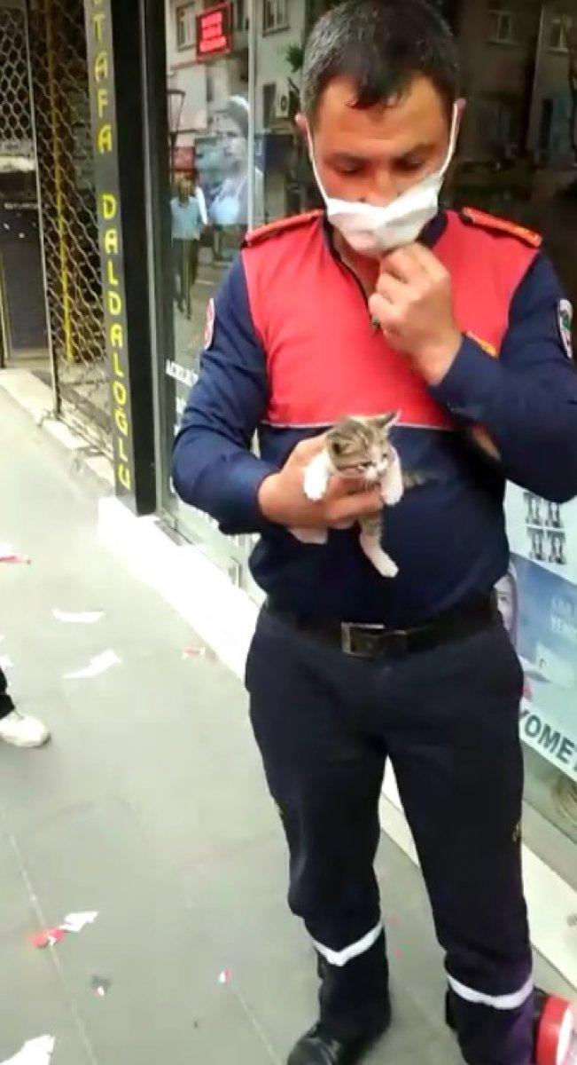 Reklam tabelasında mahsur kalan yavru kediyi itfaiye kurtardı #2