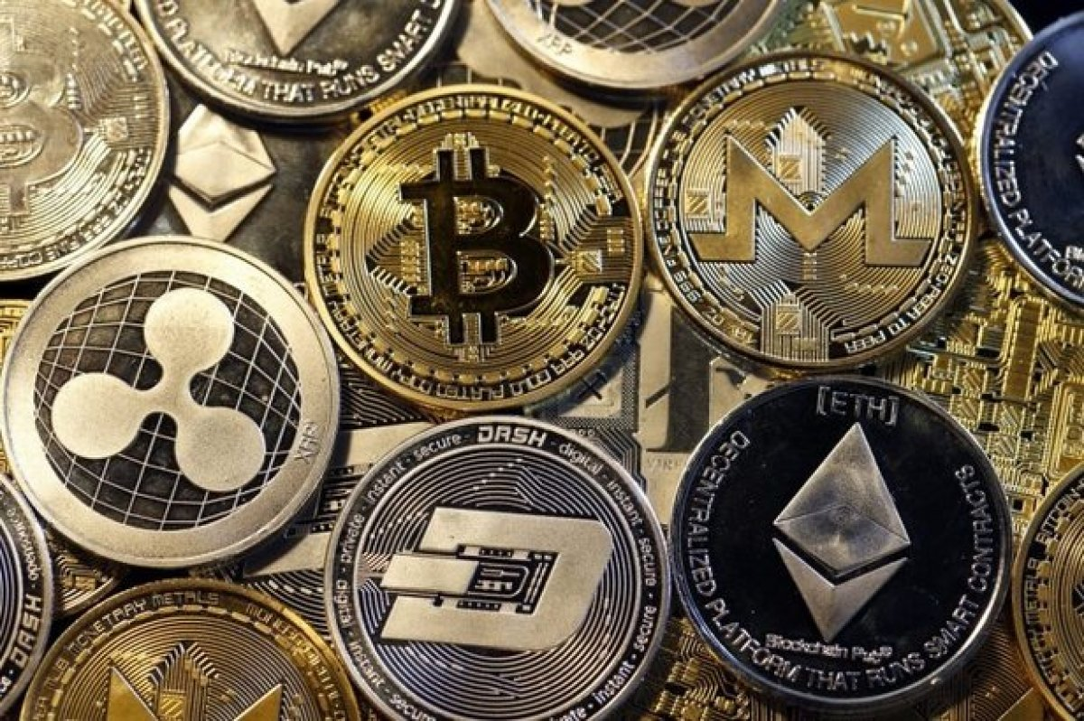 Pitbull Coin nedir? Pitbull (PIT) Coin hakkında merak edilenler.. #3