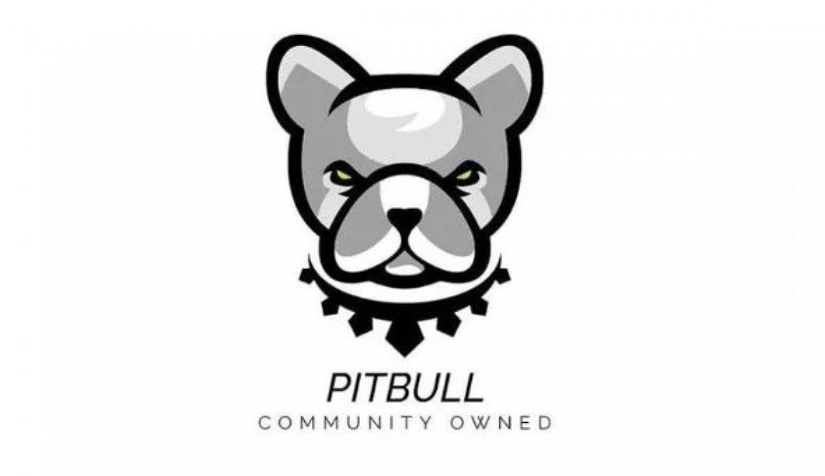 Pitbull Coin nedir? Pitbull (PIT) Coin hakkında merak edilenler.. #2