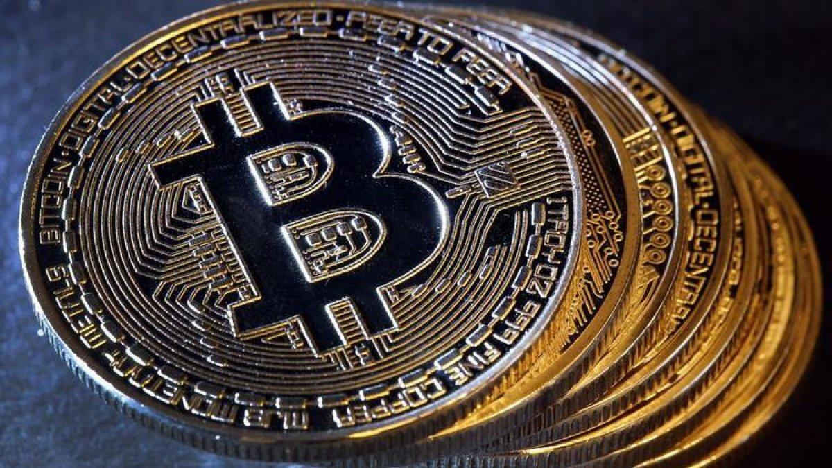 Pitbull Coin nedir? Pitbull (PIT) Coin hakkında merak edilenler.. #1