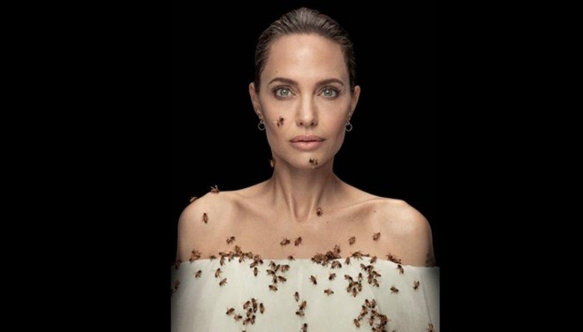 Angelina Jolie, arıların önemini anlatmak için objektif karşısına geçti  #1