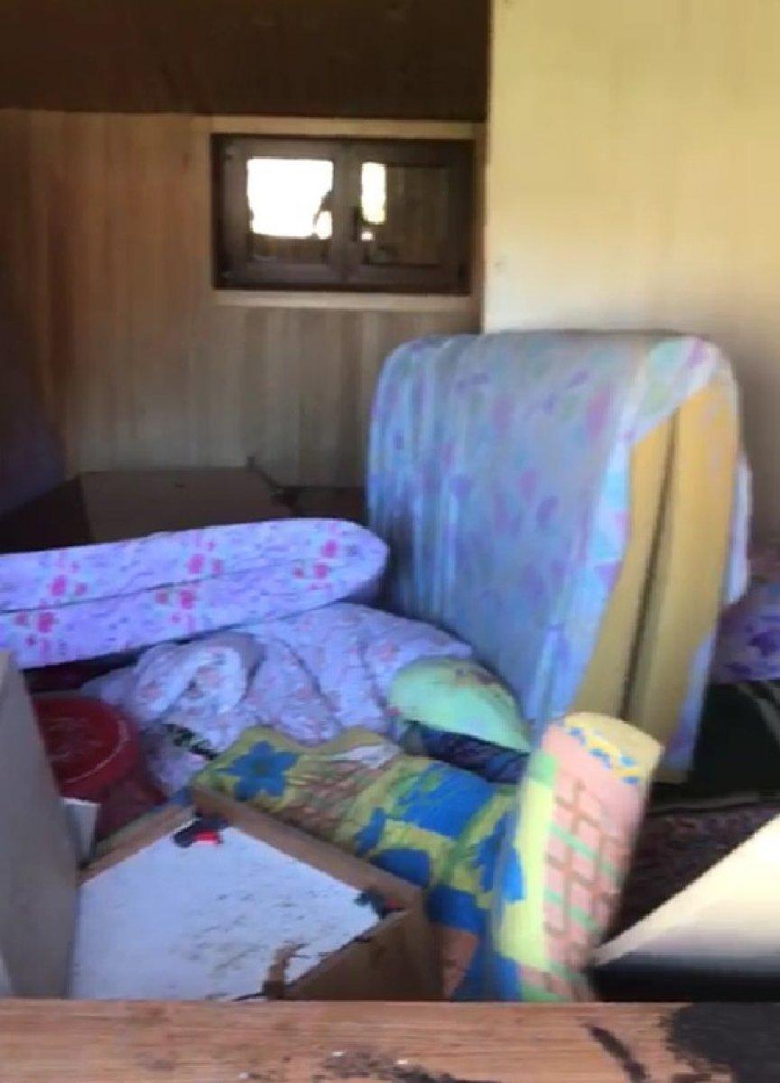 Rize'de aç kalan ayı evin altını üstüne getirdi #1