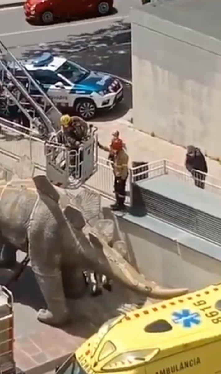 İspanya da kayıp adamın cesedi dinozor heykelinin içinden çıktı #1