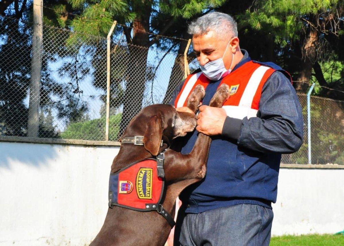 Manisa da narkotik köpeği Volta emekli oldu #1