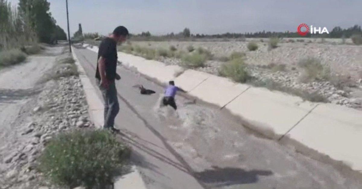 Çin'de su kanalına düşen koyunları polis kurtardı #1