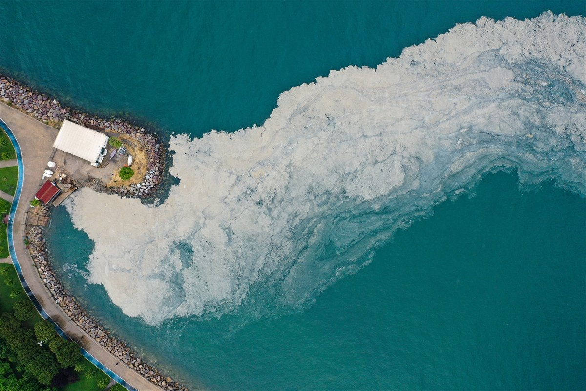 Bostancı sahilinde deniz salyası yoğunluğu su altı kamerasıyla görüntülendi #3