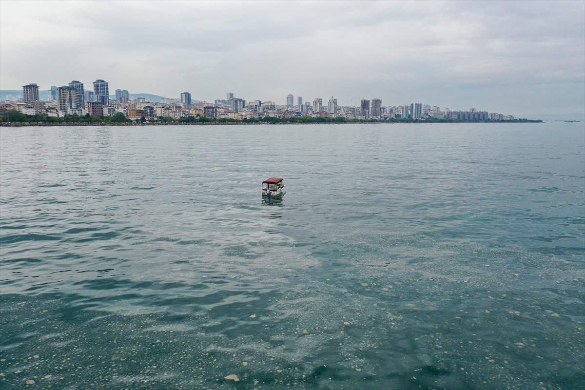 Bostancı sahilinde deniz salyası yoğunluğu su altı kamerasıyla görüntülendi #6