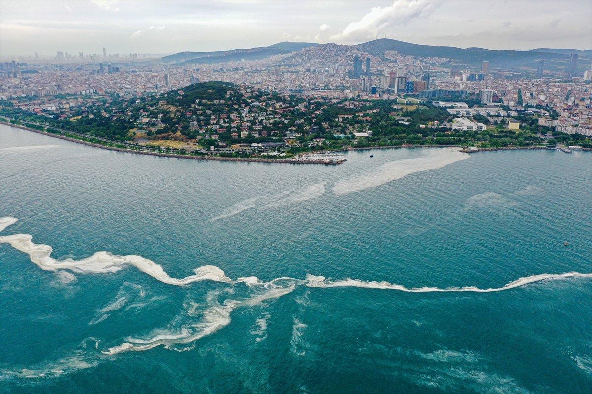 Bostancı sahilinde deniz salyası yoğunluğu su altı kamerasıyla görüntülendi #2