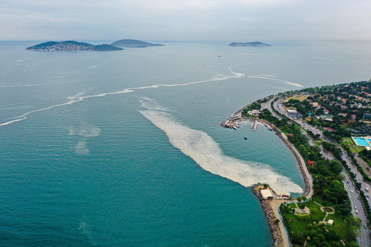 Bostancı sahilinde deniz salyası yoğunluğu su altı kamerasıyla görüntülendi #4