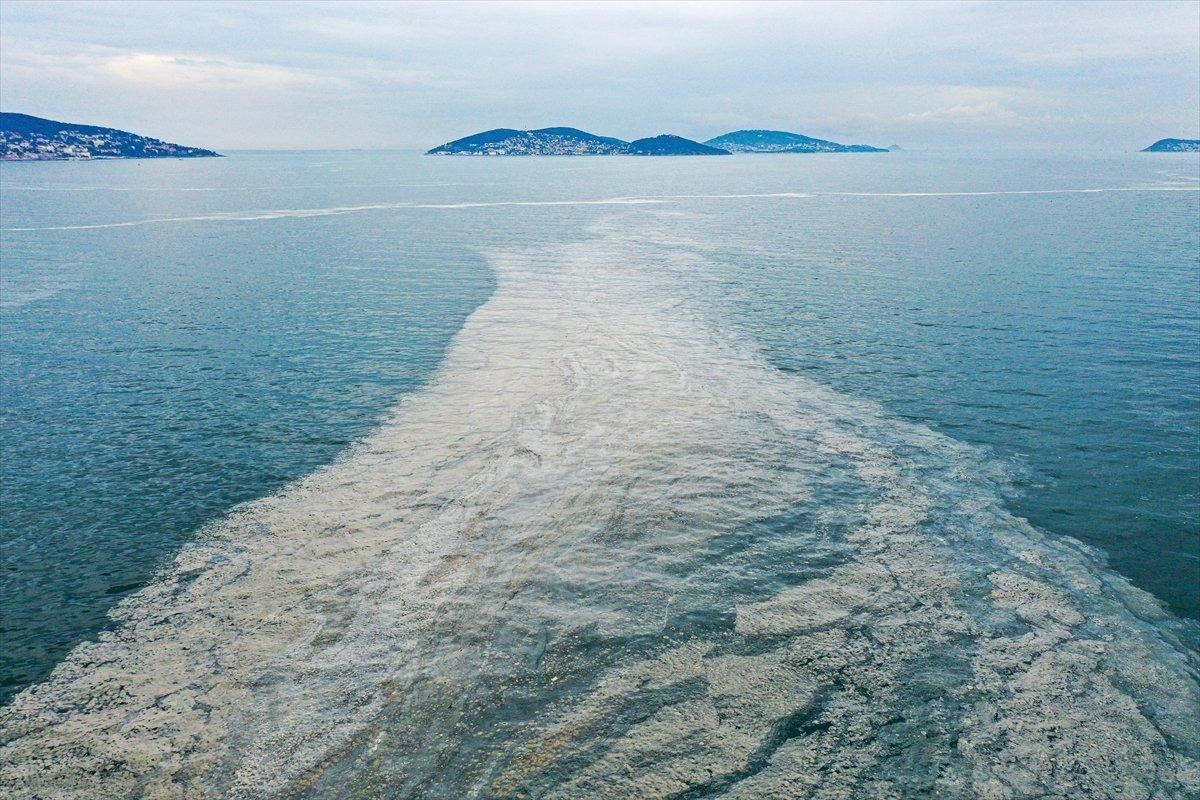 Bostancı sahilinde deniz salyası yoğunluğu su altı kamerasıyla görüntülendi #5
