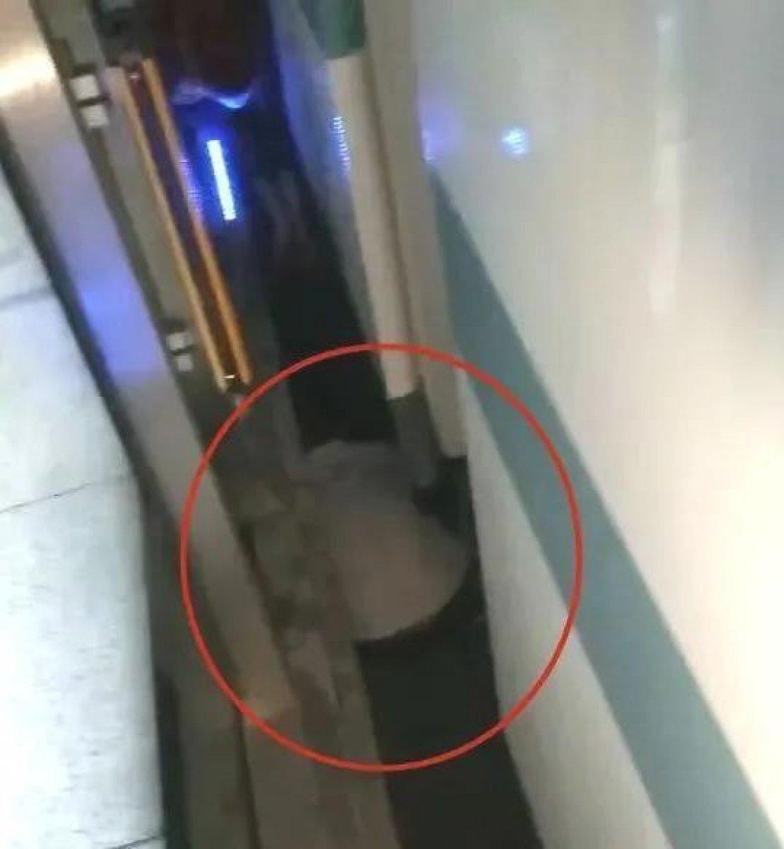 Çin'de arabasından kayan bebek, metro ile platform arasındaki boşluğa düştü  #2