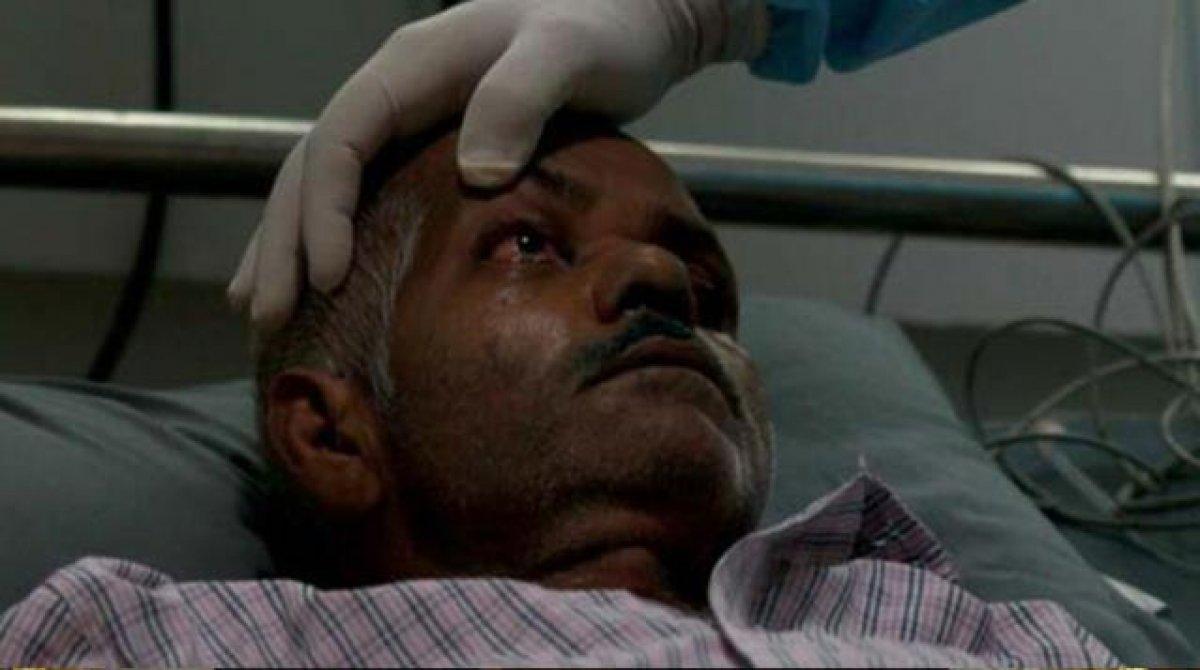 Kara mantar hastalığı Meksika'ya da sıçradı #1