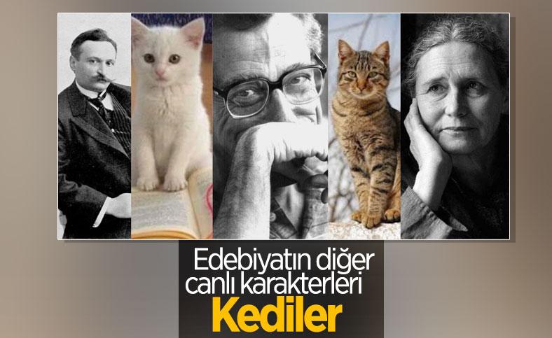 Edebiyatta kedi metaforu ve yazarların sevgisi