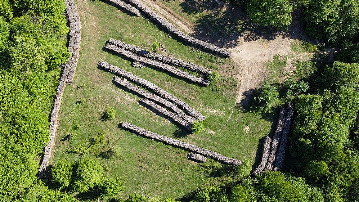 Bilecik te meşe odunlarını mangal kömürüne dönüştürüyorlar #1