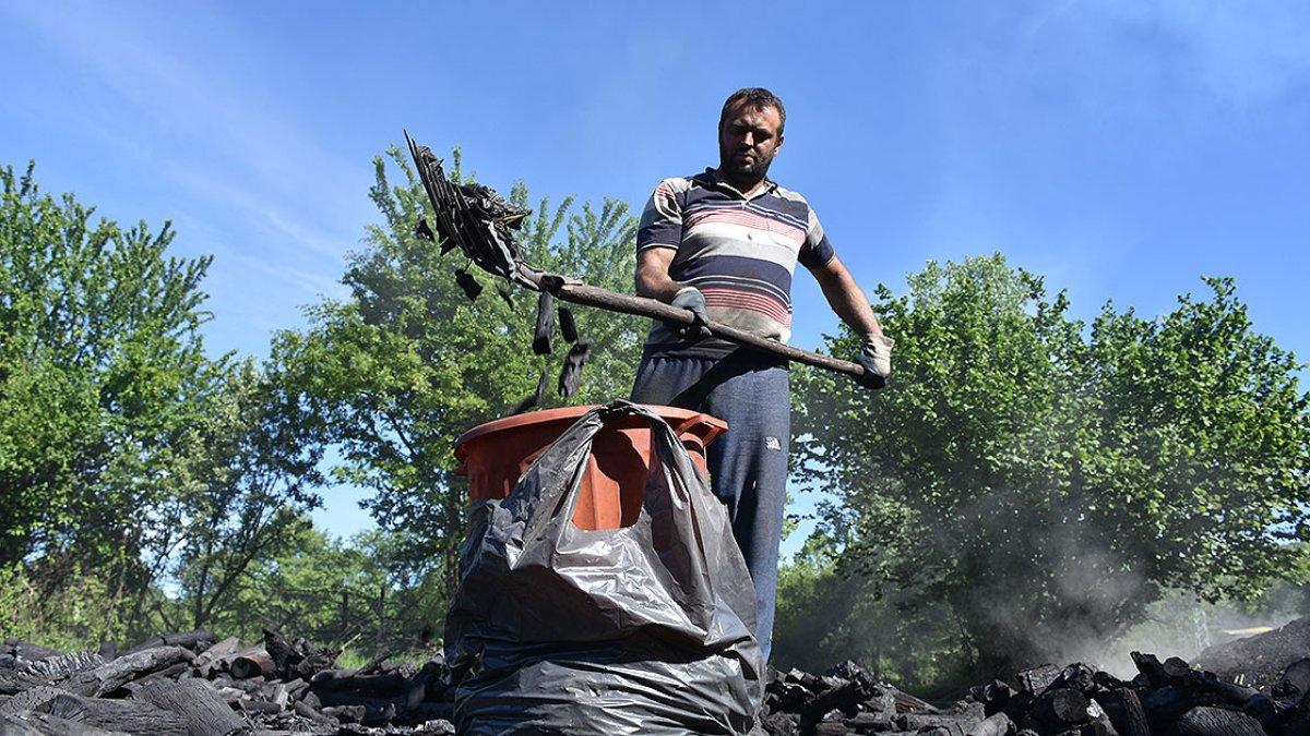 Bilecik te meşe odunlarını mangal kömürüne dönüştürüyorlar #3