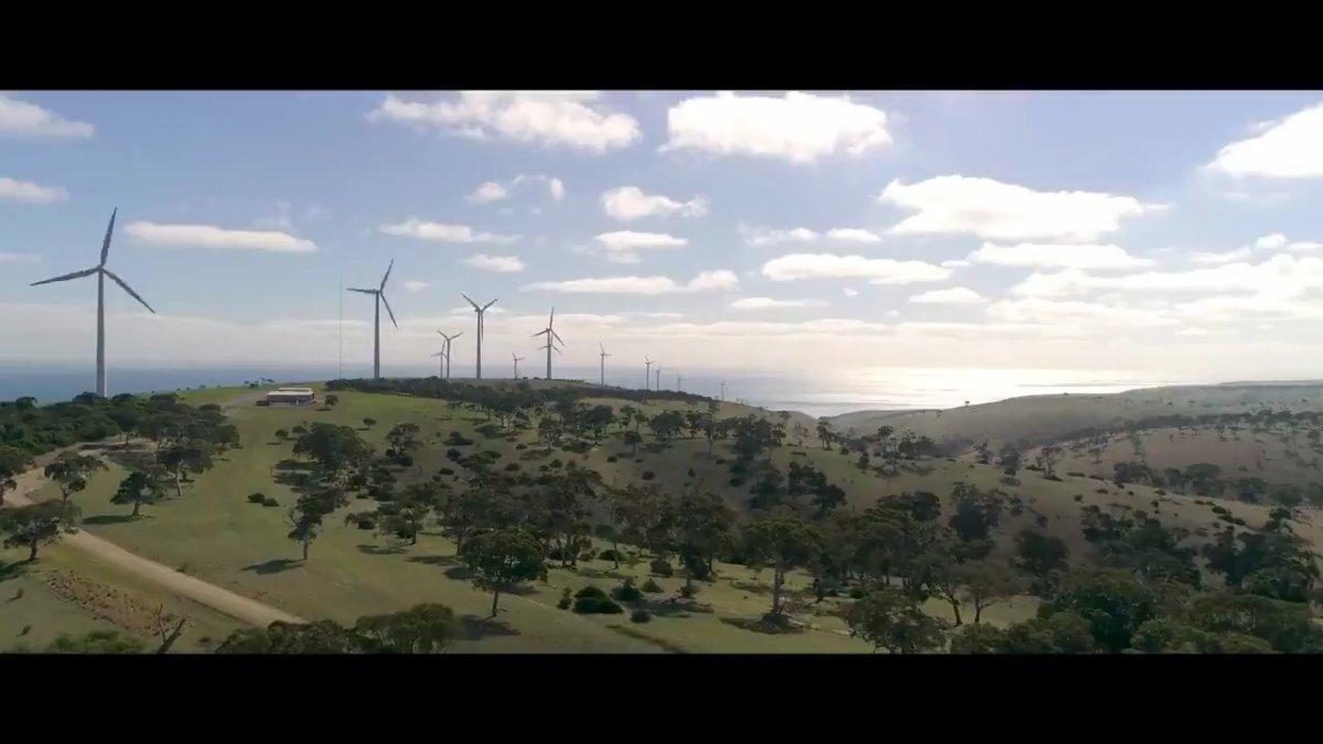 Cumhurbaşkanı Erdoğan Dünya Çevre Günü için Ağaç şiirini seslendirdi #1
