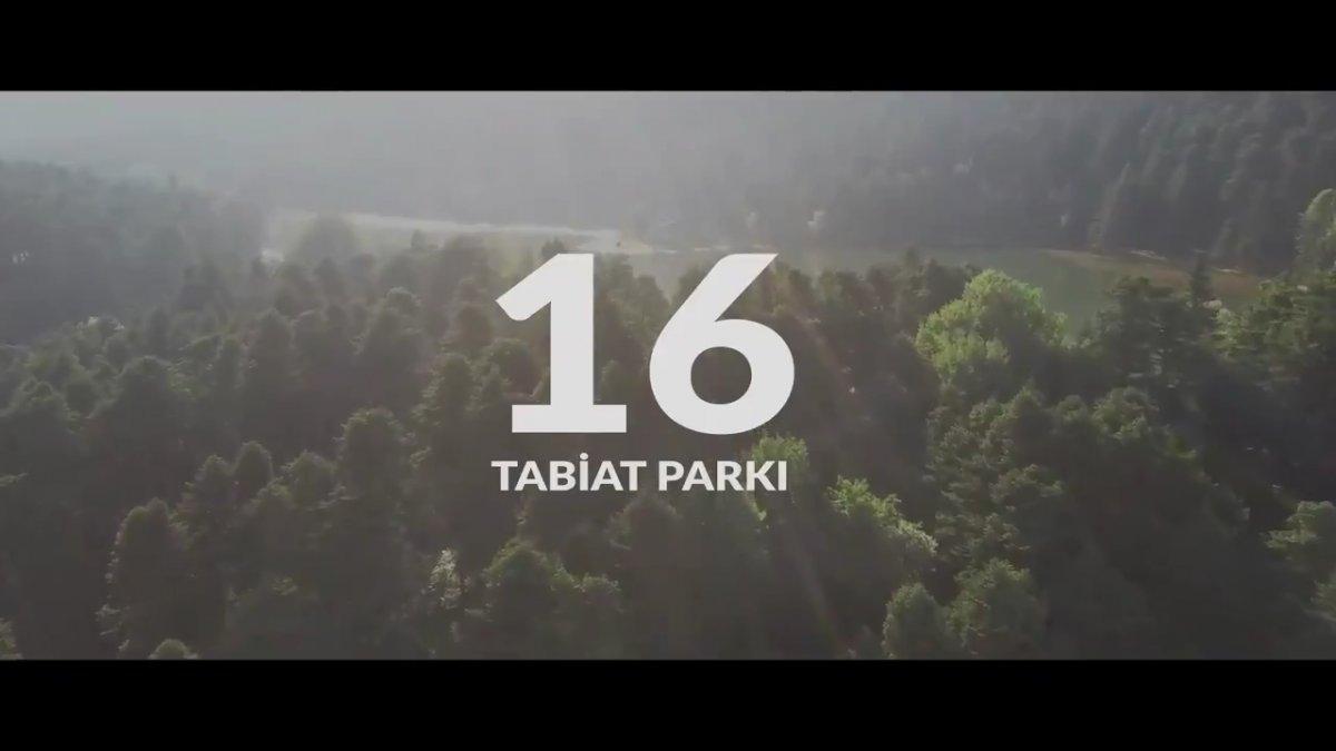 Cumhurbaşkanı Erdoğan Dünya Çevre Günü için Ağaç şiirini seslendirdi #2