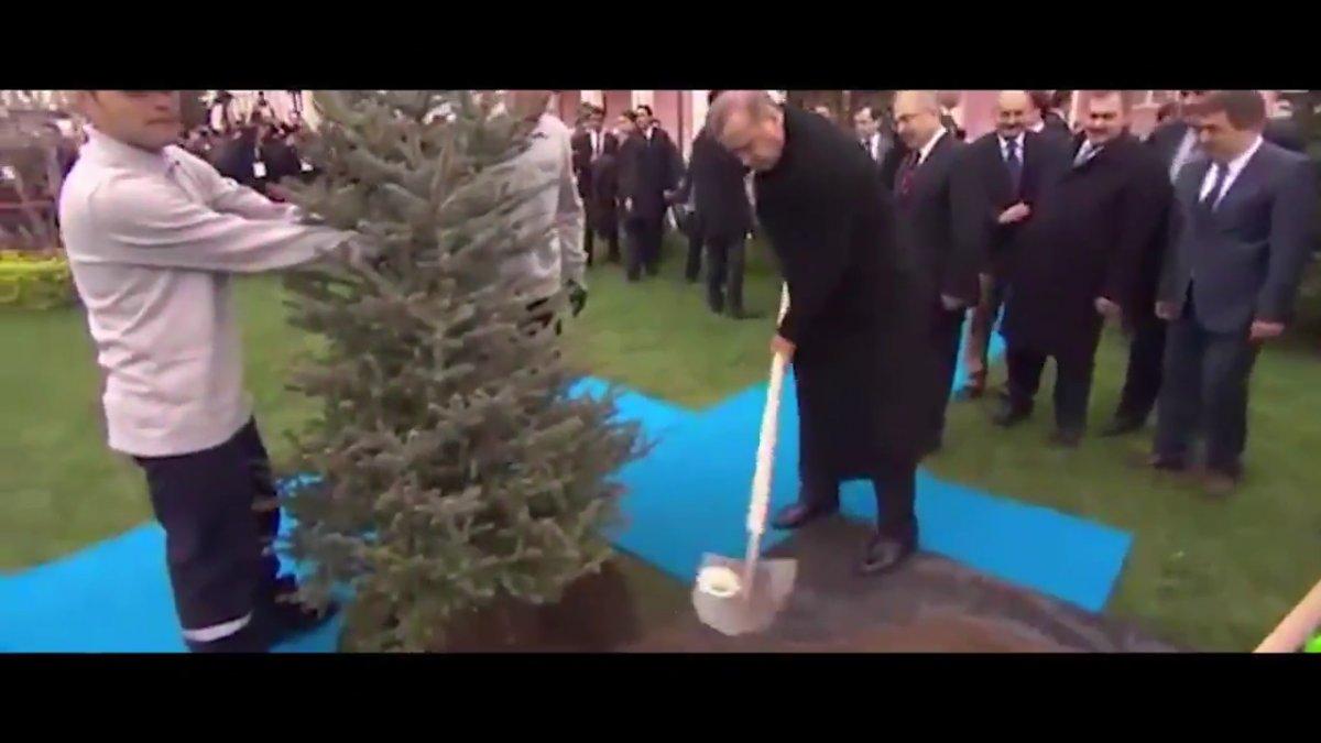 Cumhurbaşkanı Erdoğan Dünya Çevre Günü için Ağaç şiirini seslendirdi #6